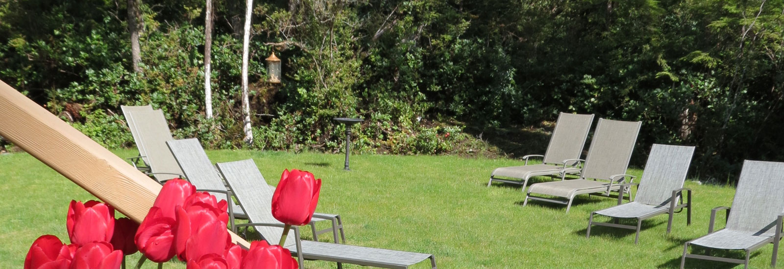 Cobble Wood & Bird Sanctuary Guesthouses Exterior